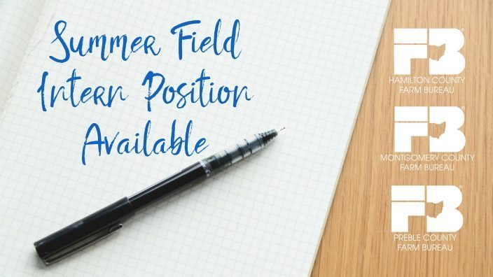 summer-field-intern-position