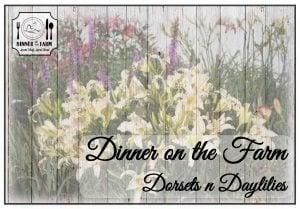 dinner-on-the-farm-image1