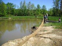 petro-aquaculture