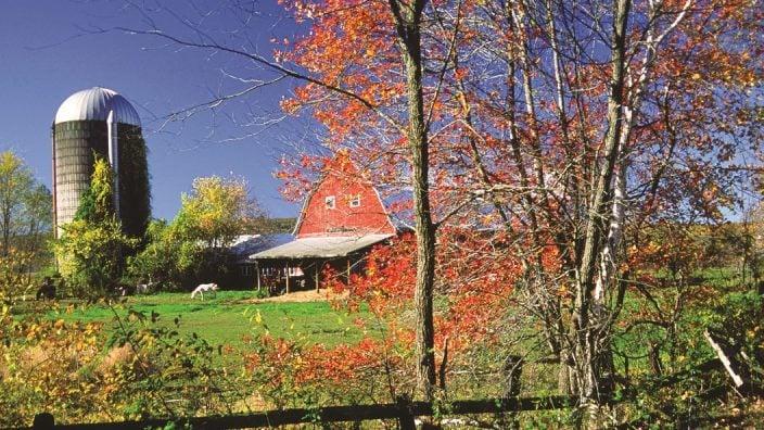 fall-farm-scene