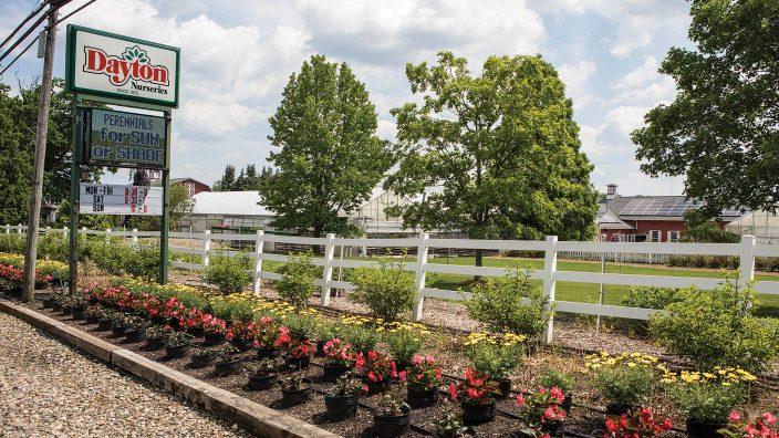 oo-dayton-nurseries