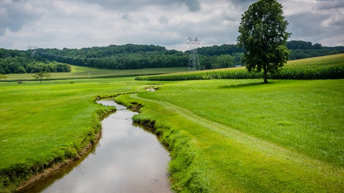Small stream in a farm field in rural Carroll County, Maryland.