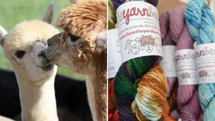 oo-yarn