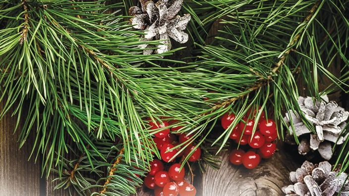 diy greenery projects give home a holiday feel