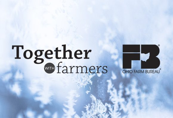 winter-logos
