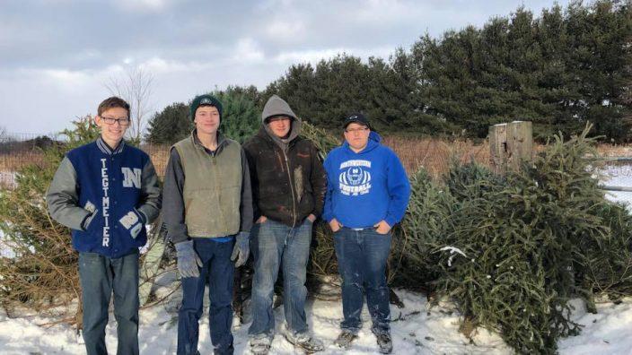 christmas-tree-pick-up