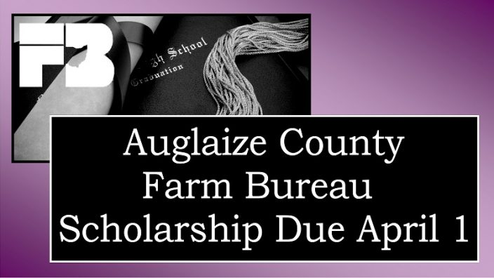 auglaize-scholarship2