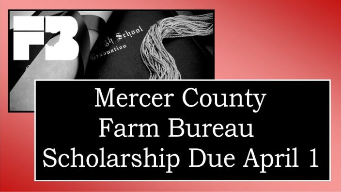 mercer-scholarship