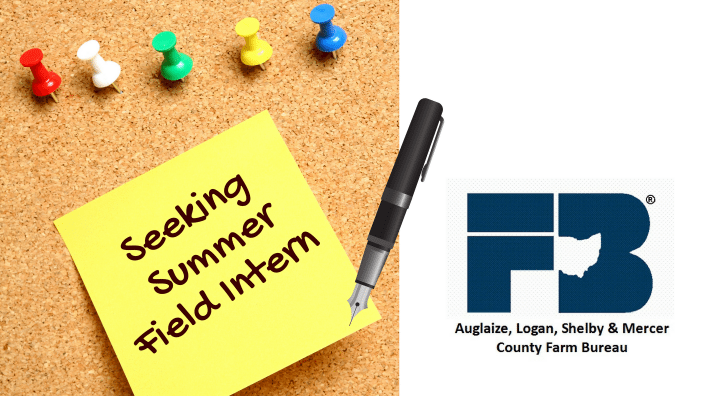 seeking-summer-field-intern