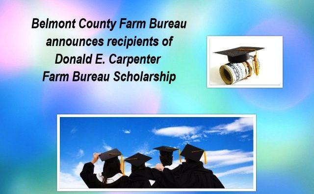 bc-scholarship