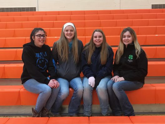 Equine Judging Team L-R - Melanie Grove, Abby Groesser, Madison Bias, Chloee Howard