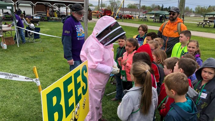 ag-expo-bees