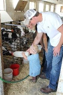 Kahlig dairy calves
