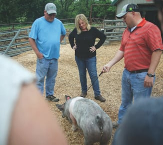Two teens participating in the court's 4-H program watch 4-H advisers Roger Mason, left, Anita Cooper and Ryan Frommling exercise a hog.