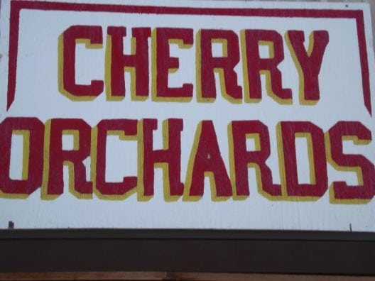 cherry-orchards