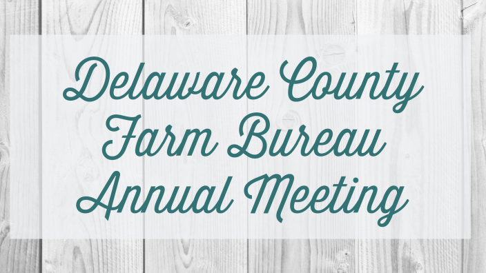 delaware-annual-meeting