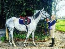 Earl the horse