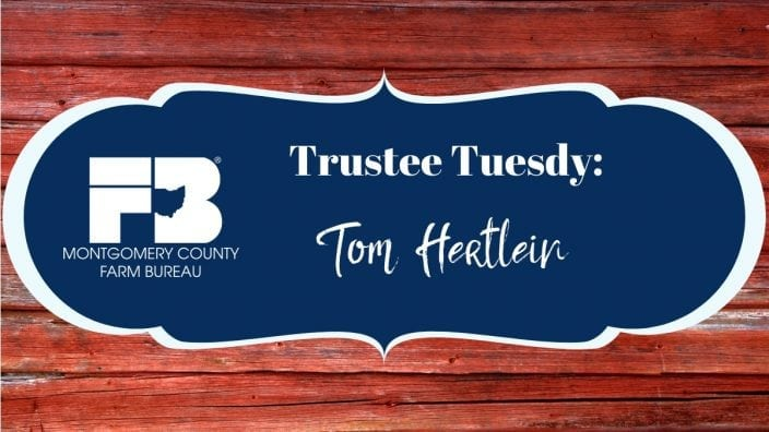 mc-trustee-tuesday