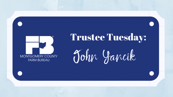 mc-trustee-tuesday-10