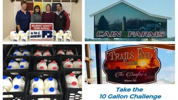 belmont-milk-challenge