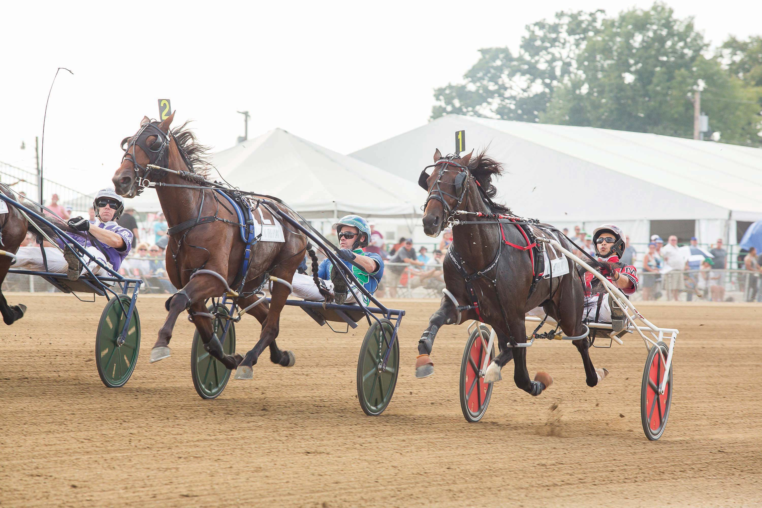Lather up (on right) with driver Montrell Teague at the start of the 1st elimination race of the 73rd Little Brown Jug.