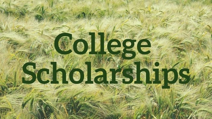 scholarship-photo-for-site