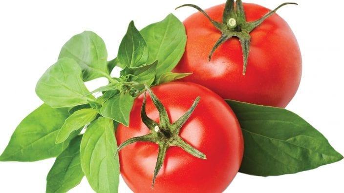 tomatoesbasil_cutout