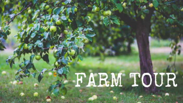 farm-tour