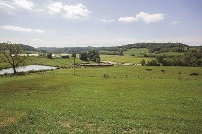 Mizer Farm