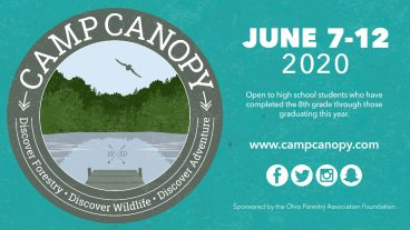 Camp Canopy