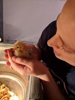 Brannon poultry