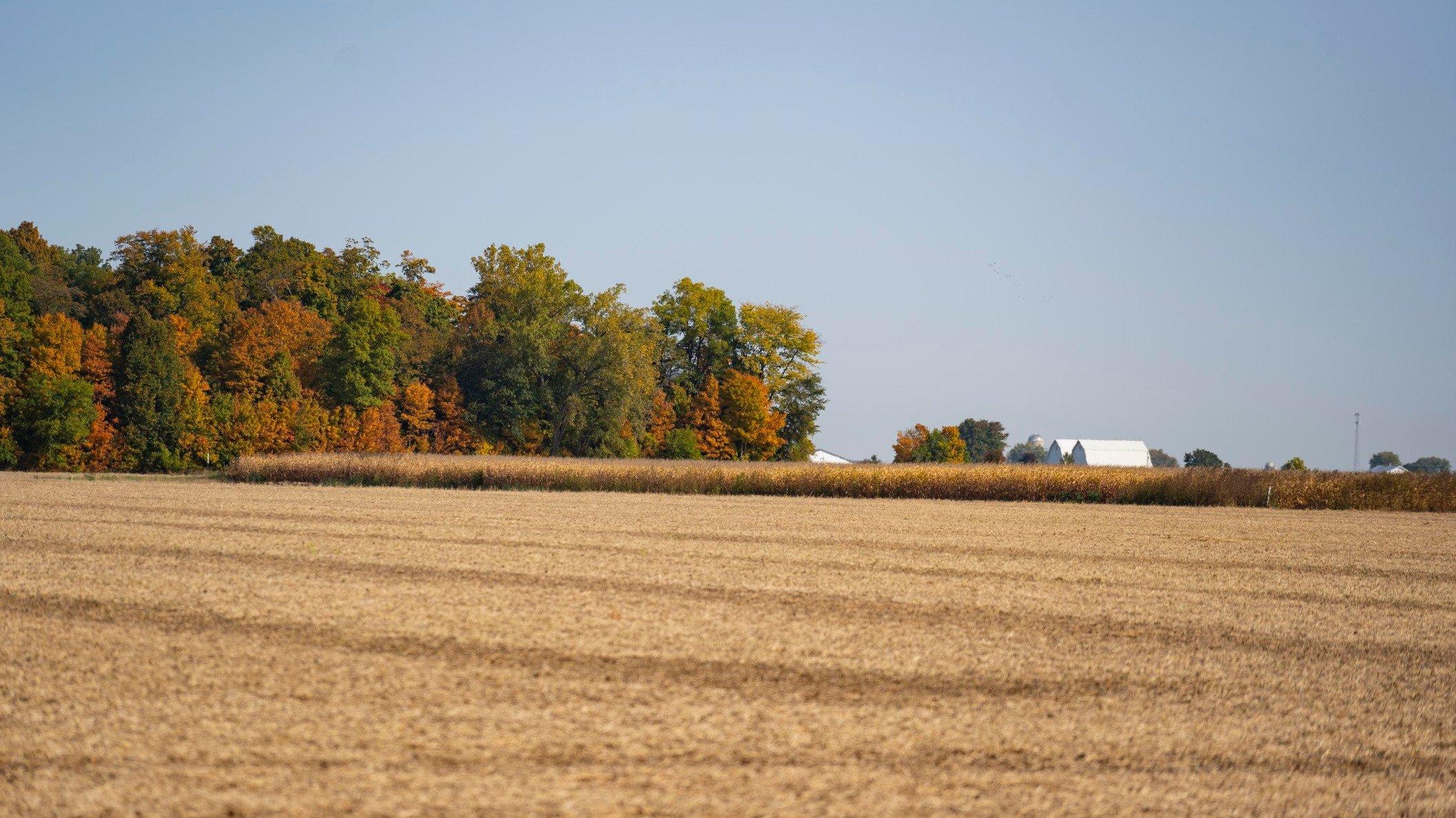 2020 Fall harvest Ohio