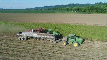 Corcoran Farms