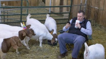 Dr. Andrew Bowman and goats